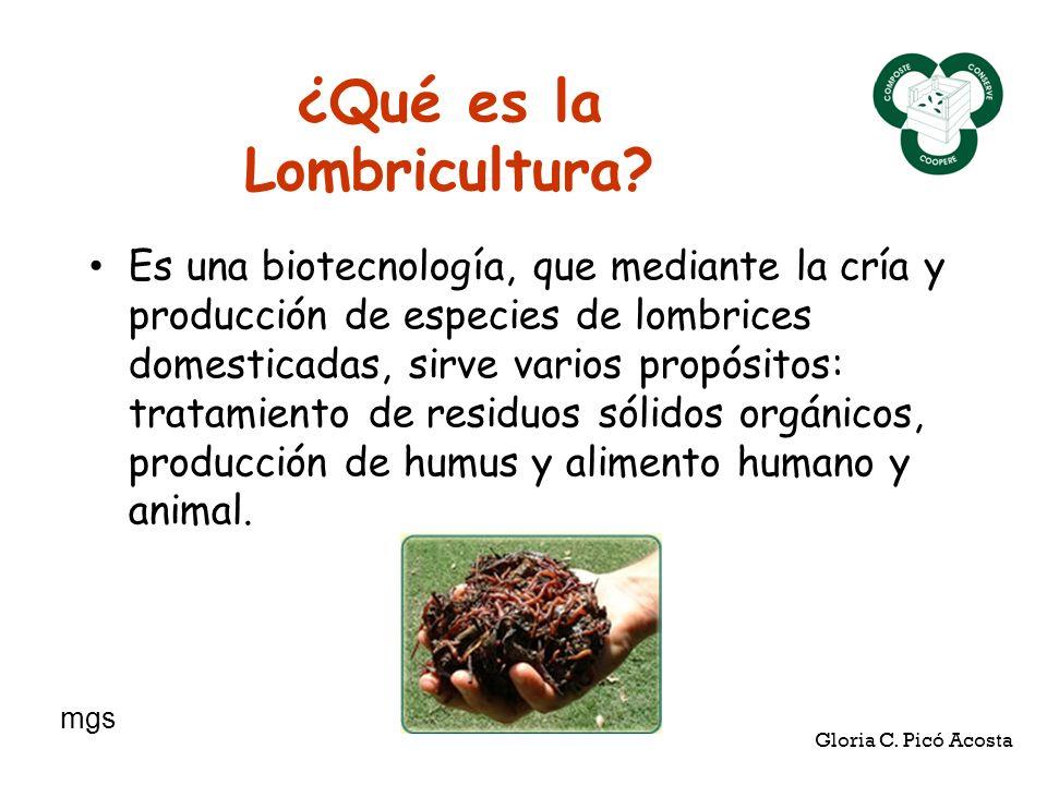 ¿Qué es la Lombricultura