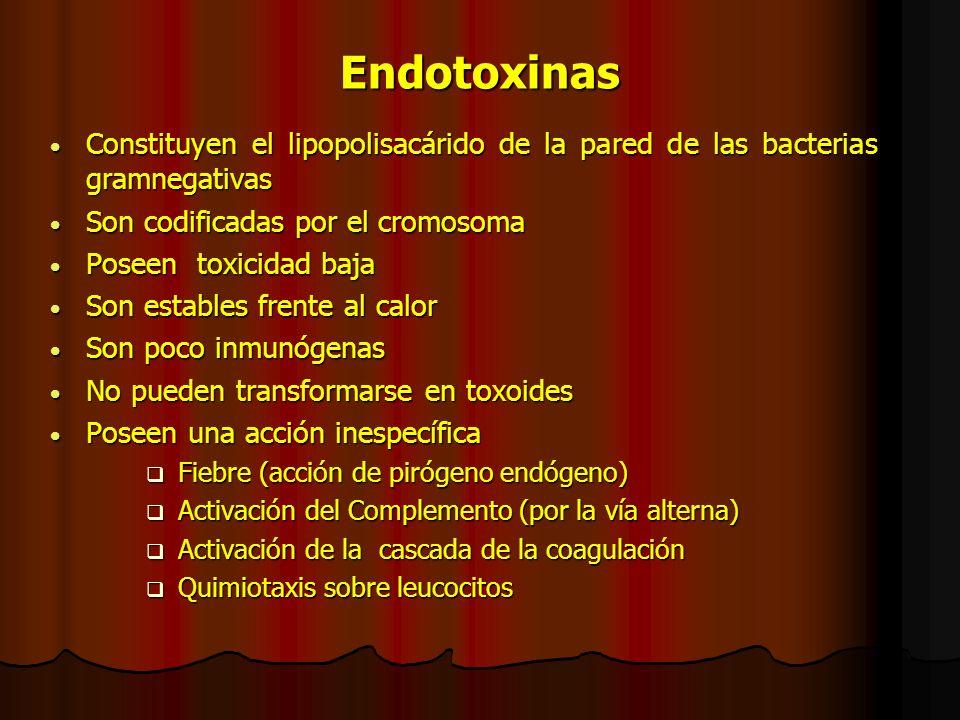 Endotoxinas Constituyen el lipopolisacárido de la pared de las bacterias gramnegativas. Son codificadas por el cromosoma.