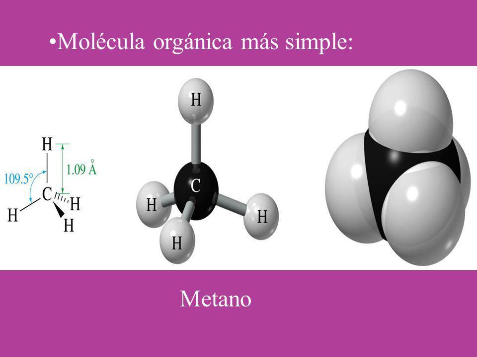 Molécula orgánica más simple: