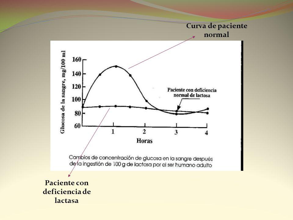 Paciente con deficiencia de lactasa Curva de paciente normal