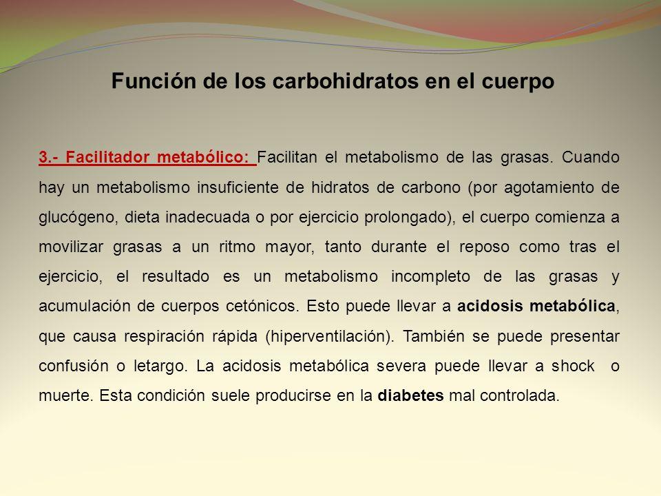 Función de los carbohidratos en el cuerpo