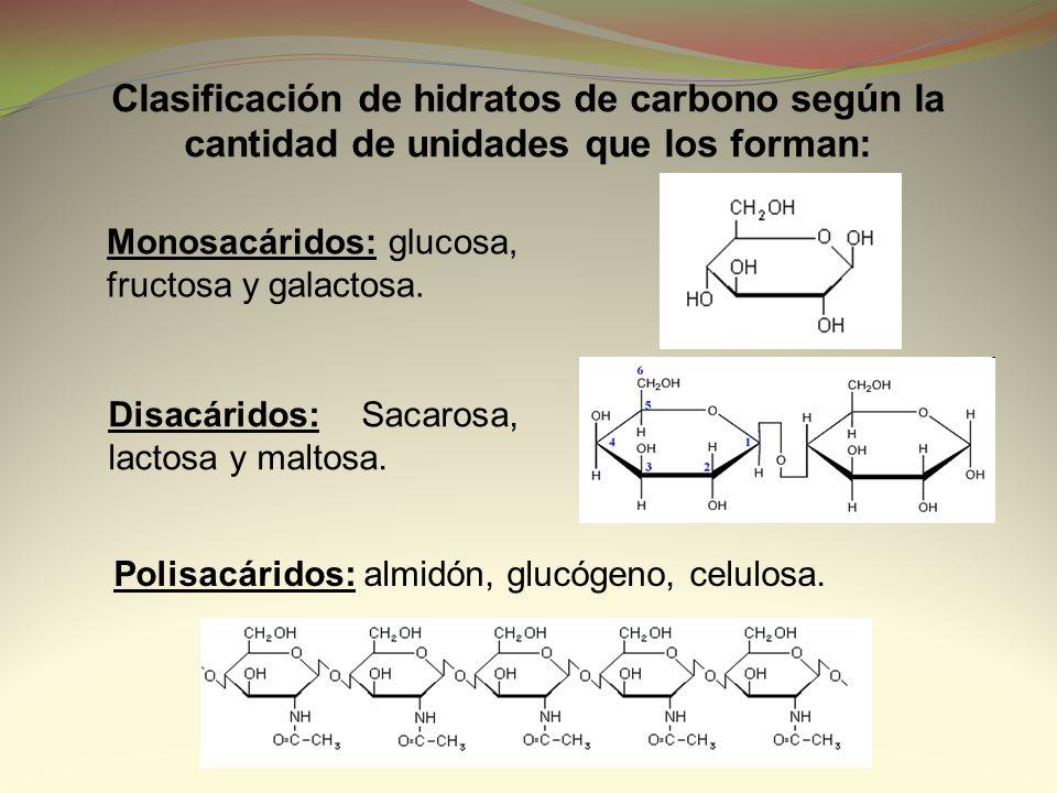 Clasificación de hidratos de carbono según la cantidad de unidades que los forman: