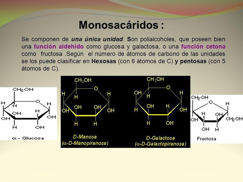 Monosacáridos :