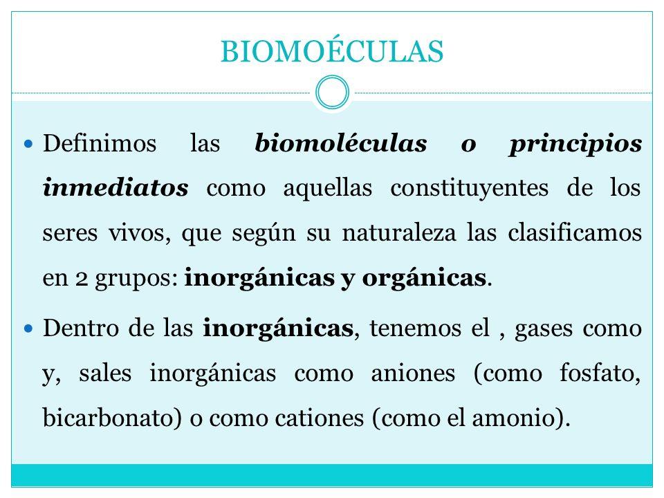 BIOMOÉCULAS