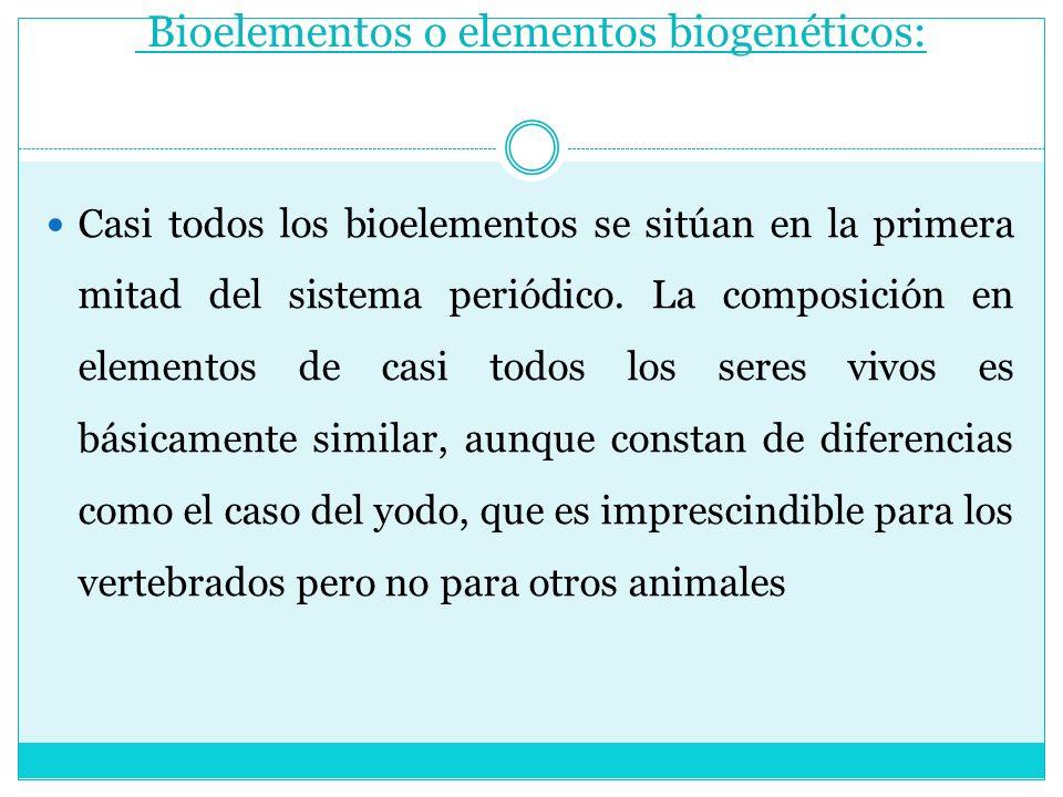 Bioelementos o elementos biogenéticos: