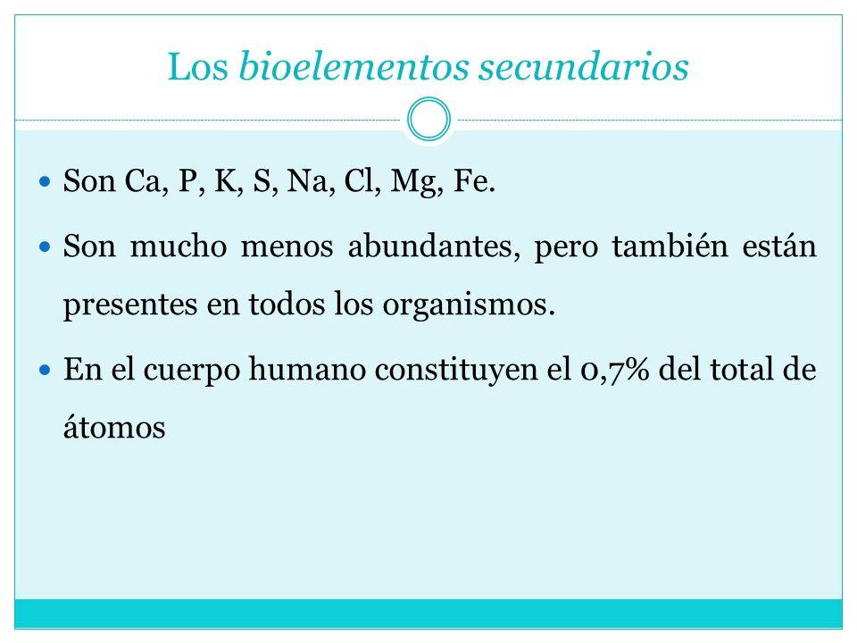 Los bioelementos secundarios