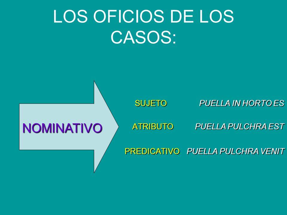 LOS OFICIOS DE LOS CASOS: