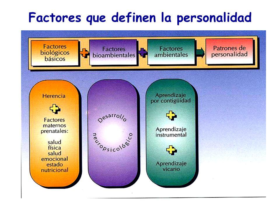 Factores que definen la personalidad