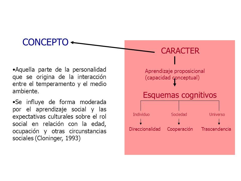CONCEPTO CARACTER Esquemas cognitivos
