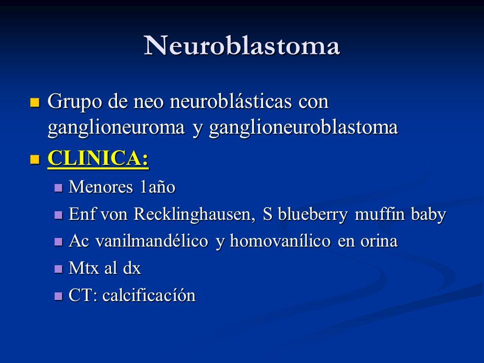 Neuroblastoma Grupo de neo neuroblásticas con ganglioneuroma y ganglioneuroblastoma. CLINICA: Menores 1año.
