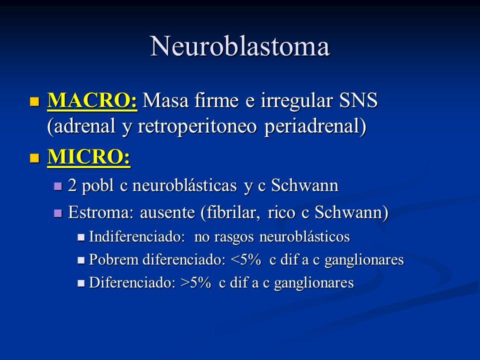 Neuroblastoma MACRO: Masa firme e irregular SNS (adrenal y retroperitoneo periadrenal) MICRO: 2 pobl c neuroblásticas y c Schwann.
