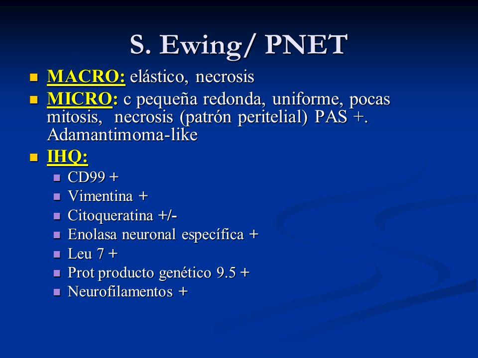 S. Ewing/ PNET MACRO: elástico, necrosis