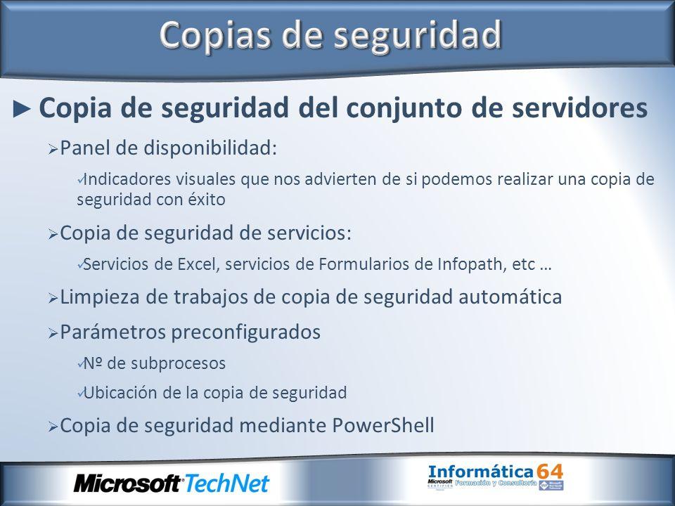 Copias de seguridad Copia de seguridad del conjunto de servidores