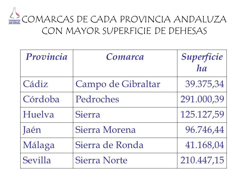 Provincia Comarca Superficie ha