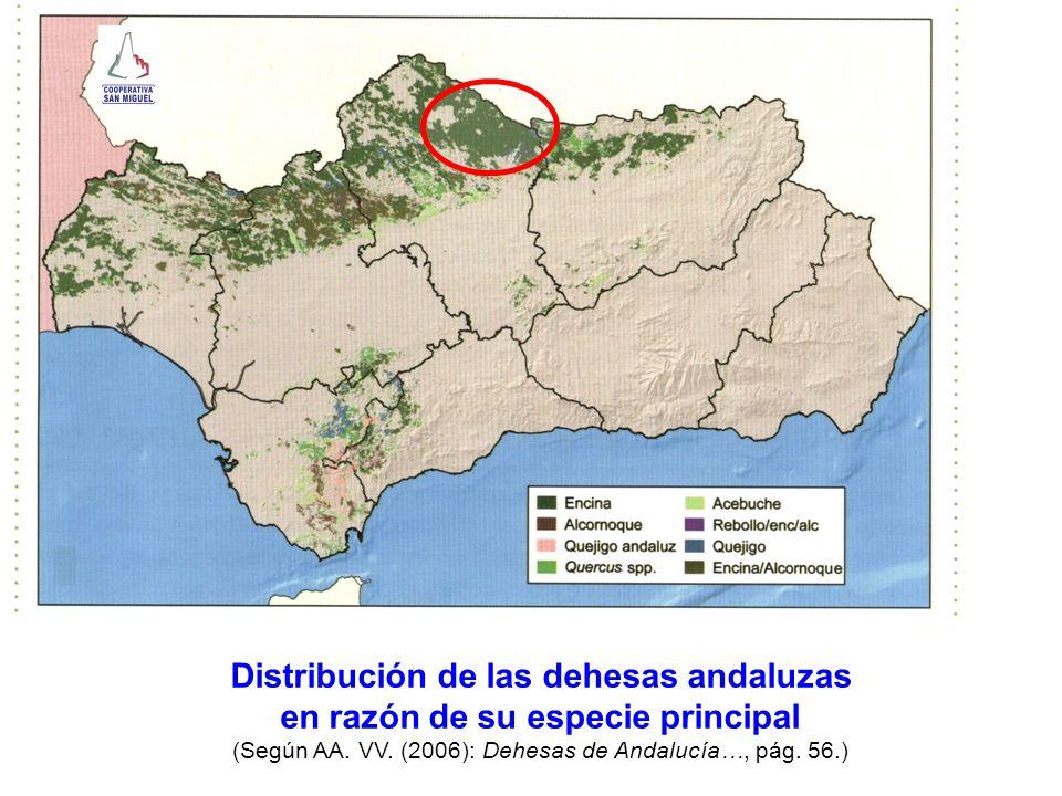 Distribución de las dehesas andaluzas en razón de su especie principal