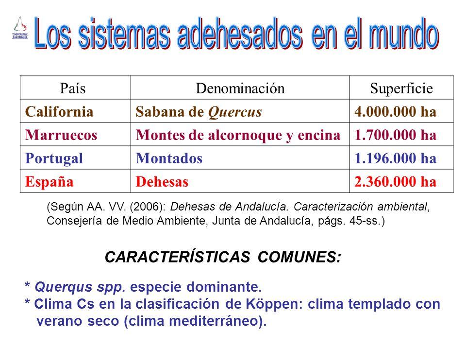 CARACTERÍSTICAS COMUNES: