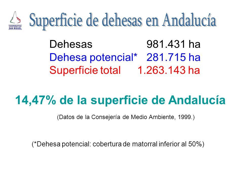 Superficie de dehesas en Andalucía