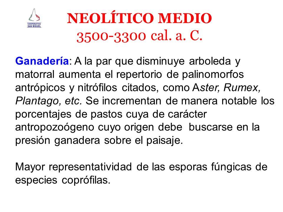 NEOLÍTICO MEDIO 3500-3300 cal. a. C.