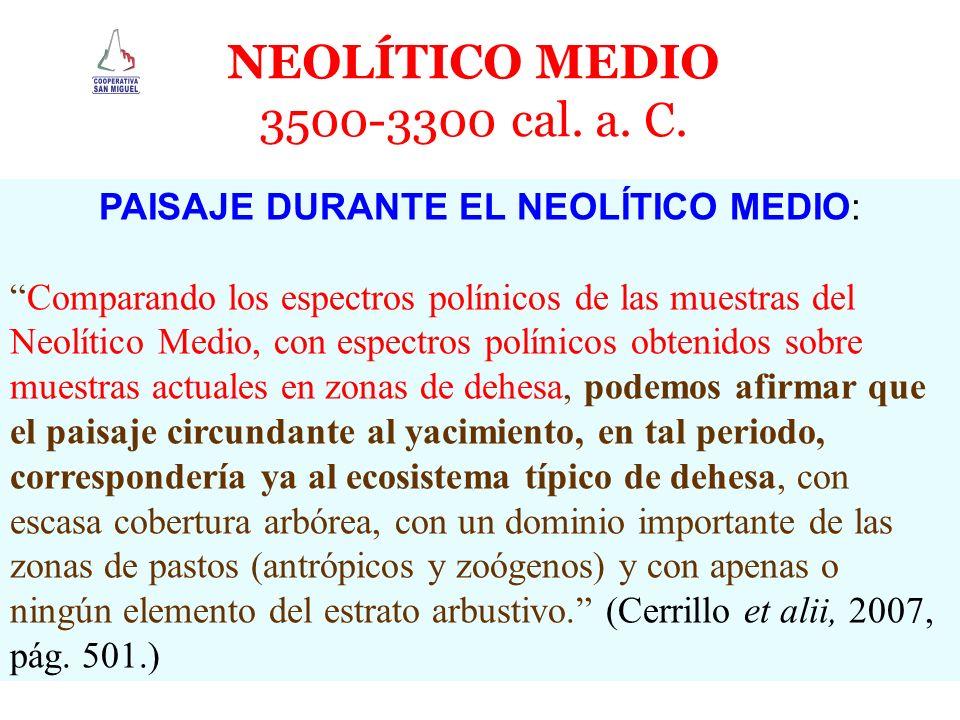 PAISAJE DURANTE EL NEOLÍTICO MEDIO: