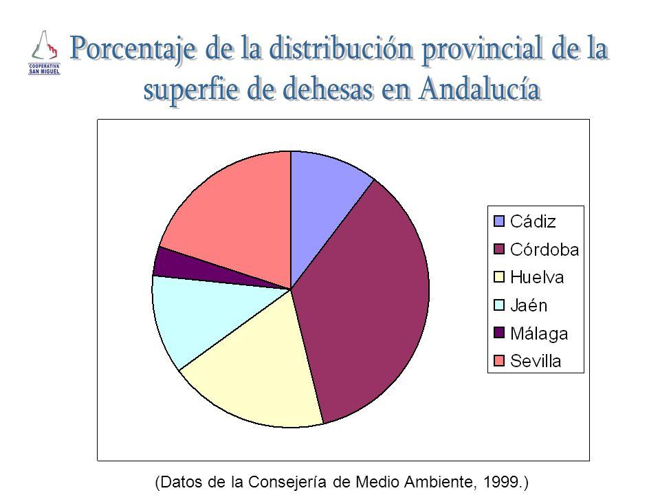 Porcentaje de la distribución provincial de la
