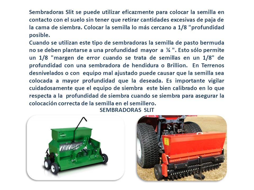 Sembradoras Slit se puede utilizar eficazmente para colocar la semilla en contacto con el suelo sin tener que retirar cantidades excesivas de paja de la cama de siembra. Colocar la semilla lo más cercano a 1/8 profundidad posible.