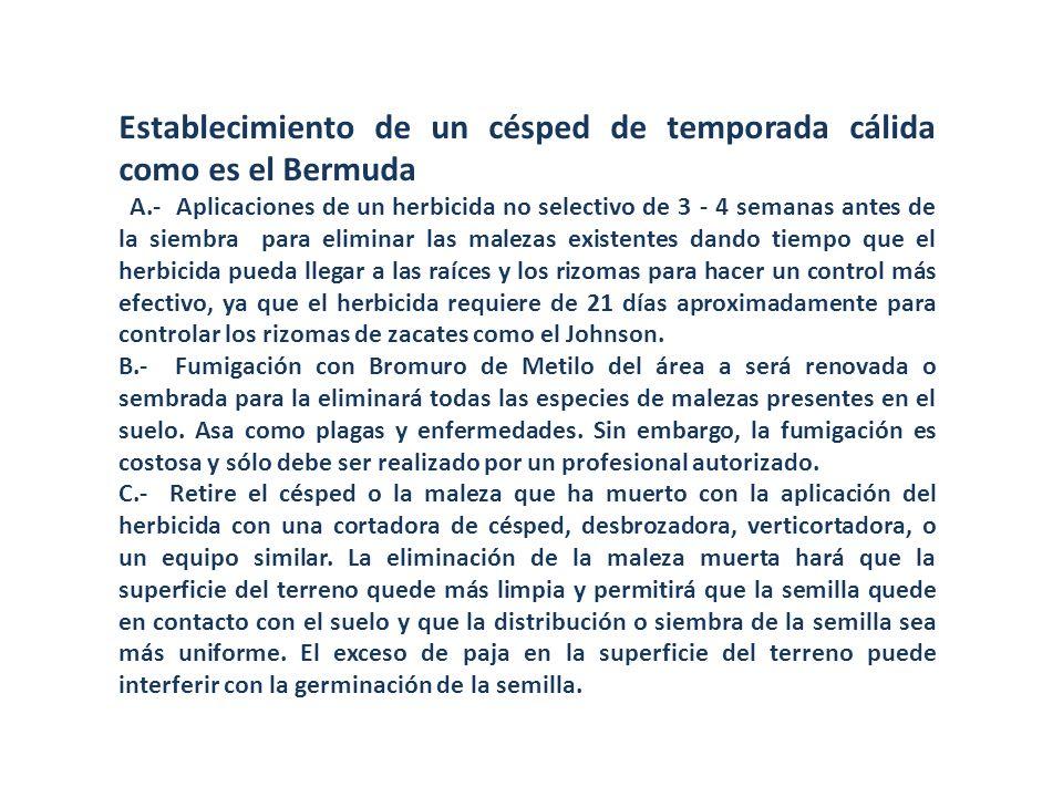 Establecimiento de un césped de temporada cálida como es el Bermuda