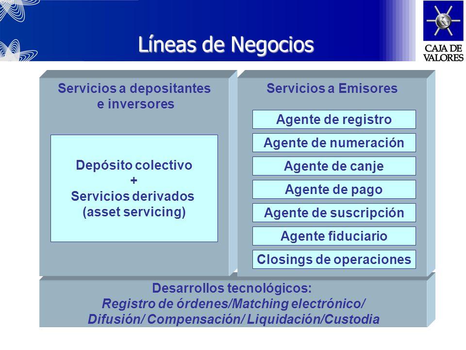 Líneas de Negocios Servicios a depositantes e inversores