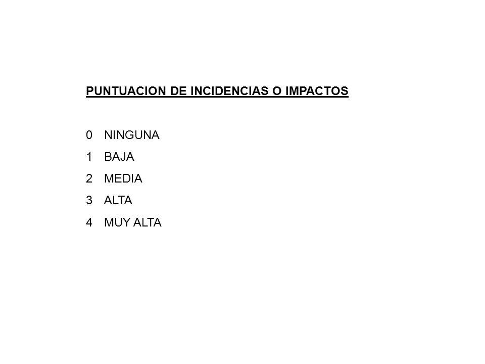 PUNTUACION DE INCIDENCIAS O IMPACTOS