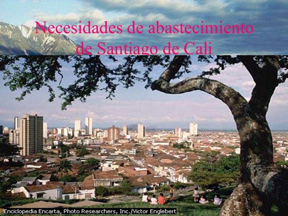 Necesidades de abastecimiento de Santiago de Cali