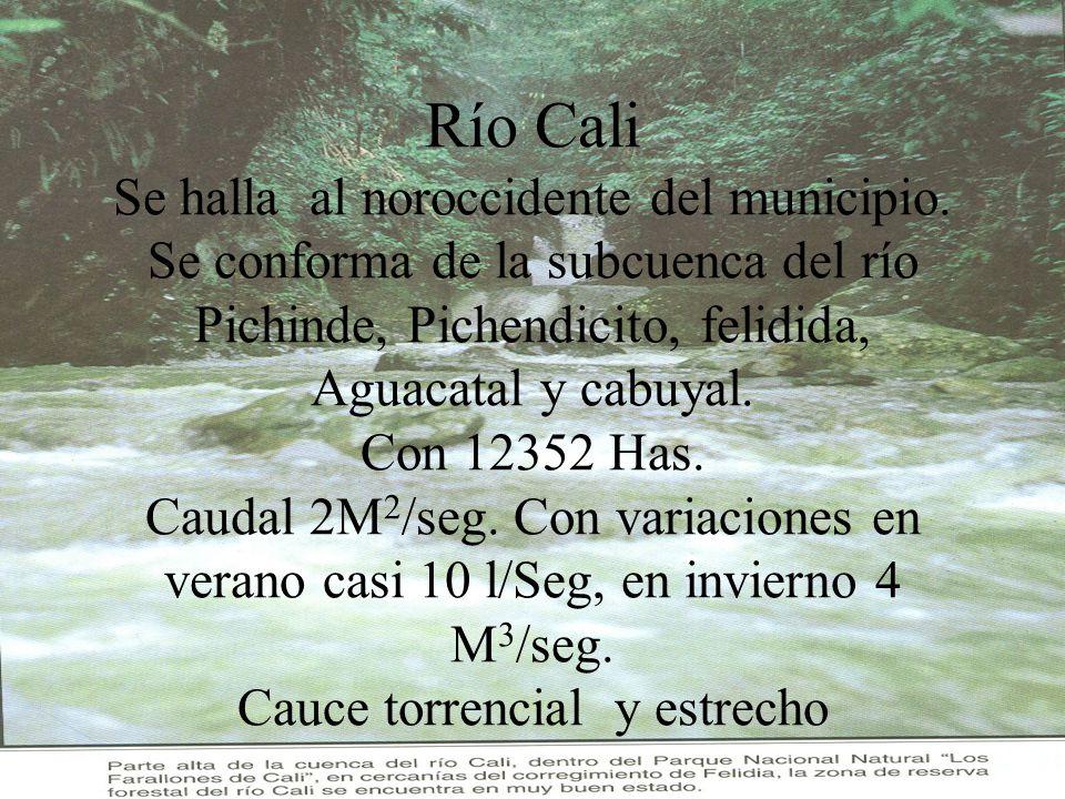 Río Cali Se halla al noroccidente del municipio