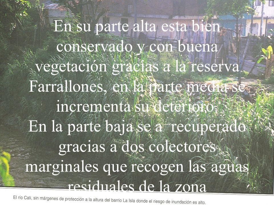 En su parte alta esta bien conservado y con buena vegetación gracias a la reserva Farrallones, en la parte media se incrementa su deterioro.