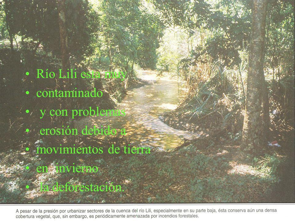Río Lili esta muy contaminado. y con problemas. erosión debido a. movimientos de tierra. en invierno.