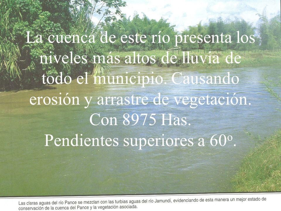 La cuenca de este río presenta los niveles más altos de lluvia de todo el municipio.