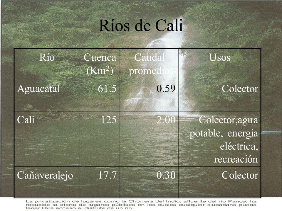 Ríos de Cali Río Cuenca (Km2) Caudal promedio Usos Aguacatal 61.5 0.59