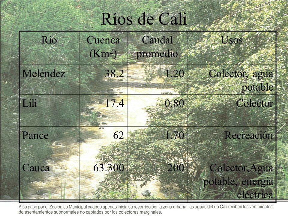 Ríos de Cali Río Cuenca (Km2) Caudal promedio Usos Meléndez 38.2 1.20