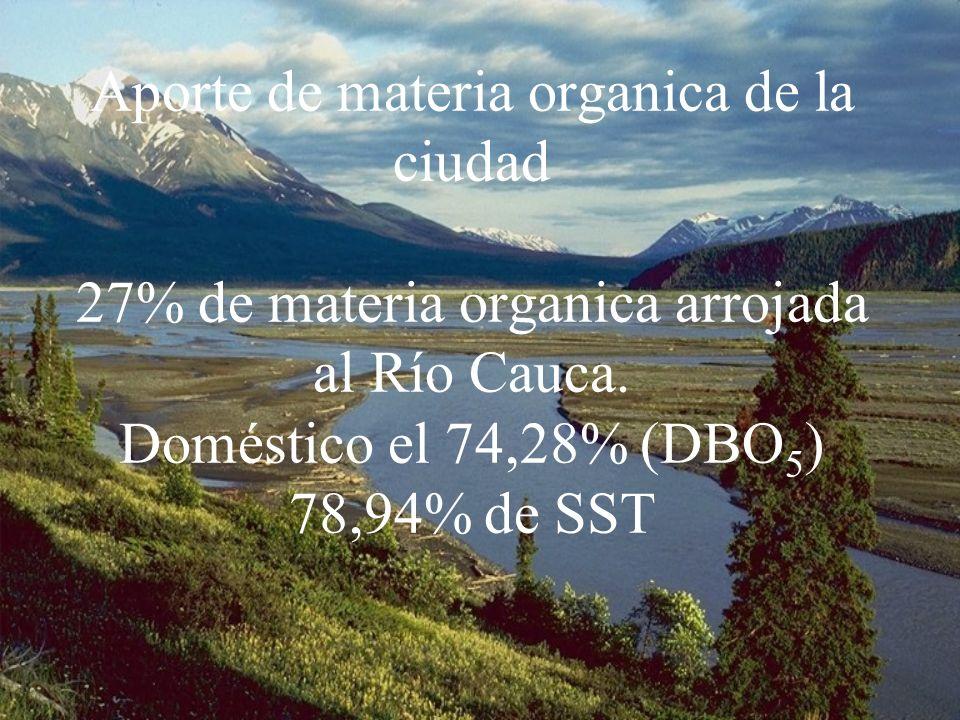 Aporte de materia organica de la ciudad 27% de materia organica arrojada al Río Cauca.