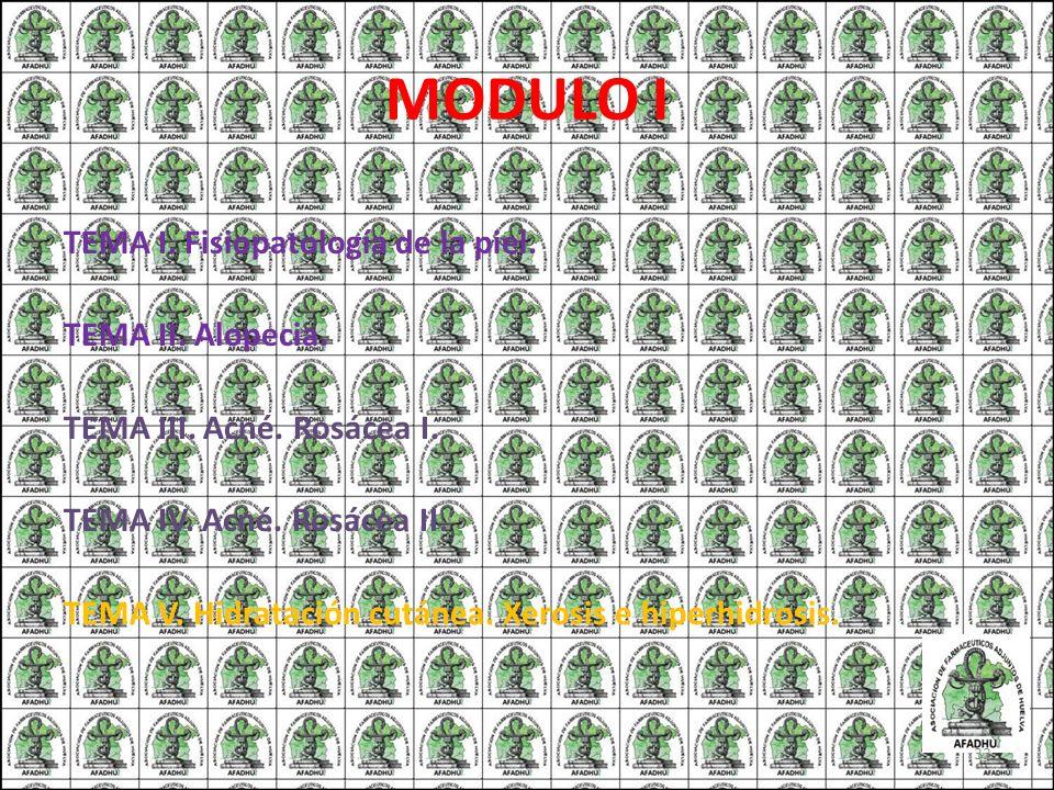 MODULO I