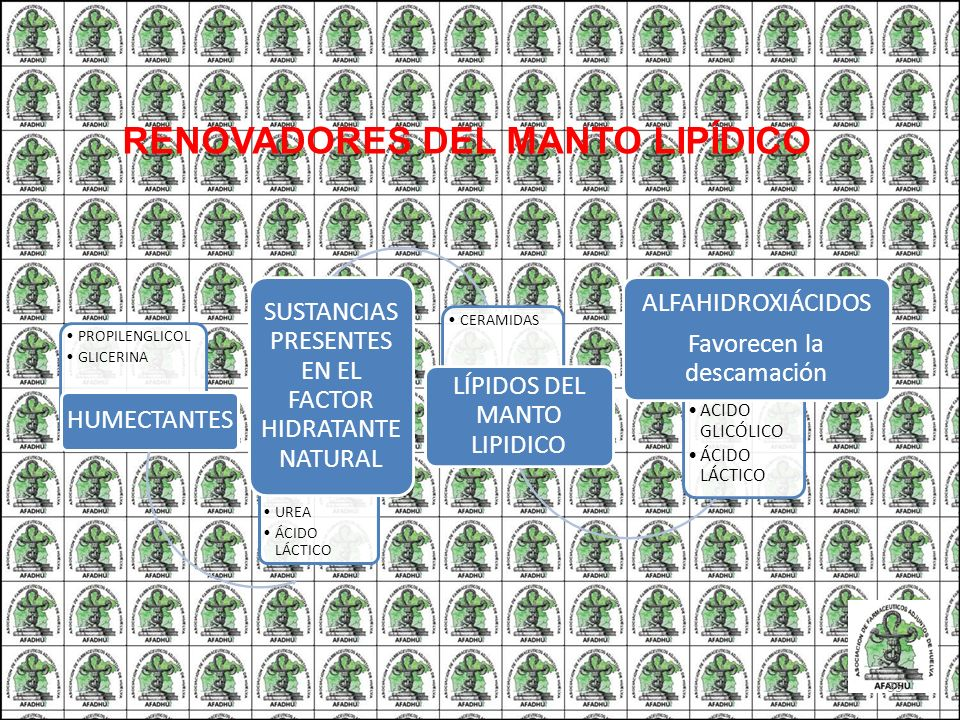 RENOVADORES DEL MANTO LIPÍDICO