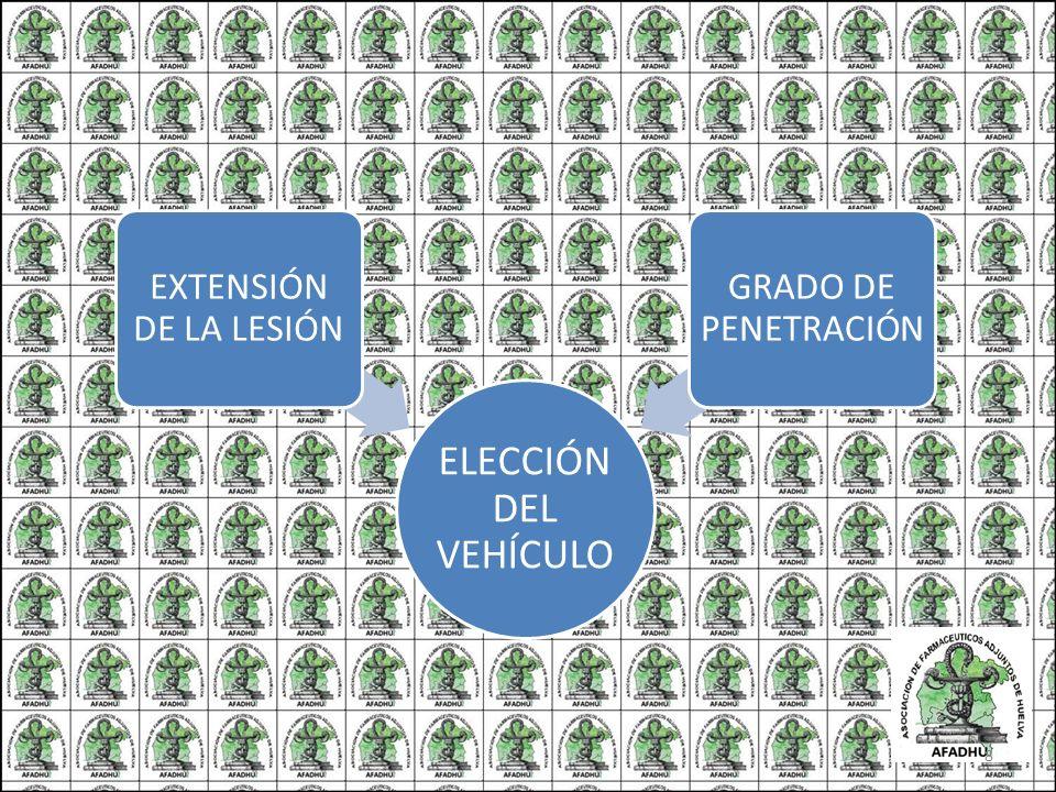 ELECCIÓN DEL VEHÍCULO EXTENSIÓN DE LA LESIÓN GRADO DE PENETRACIÓN