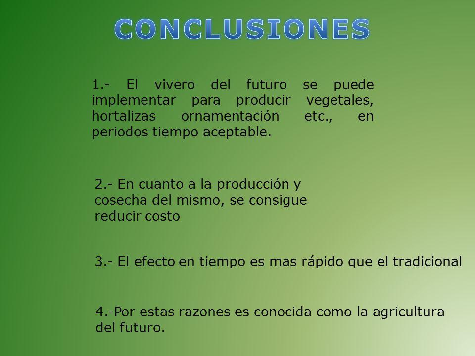 Como hacer un vivero del futuro en el estado bolivar ppt for En cuanto tiempo se cosecha la tilapia