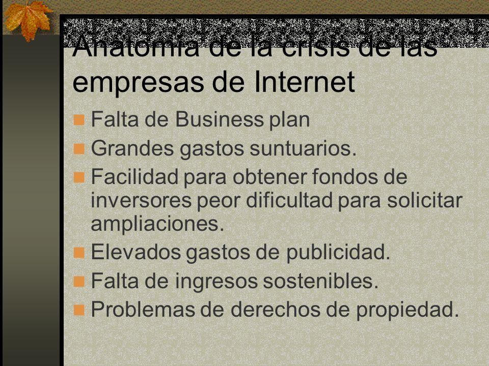 Anatomía de la crisis de las empresas de Internet