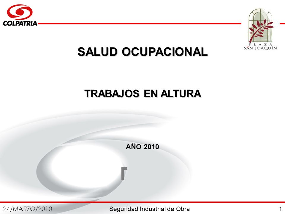 SALUD OCUPACIONAL TRABAJOS EN ALTURA AÑO 2010 1