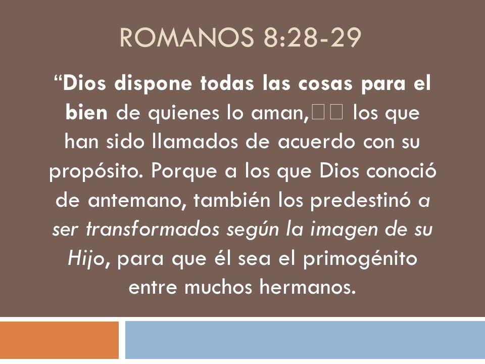 Romanos 8:28-29