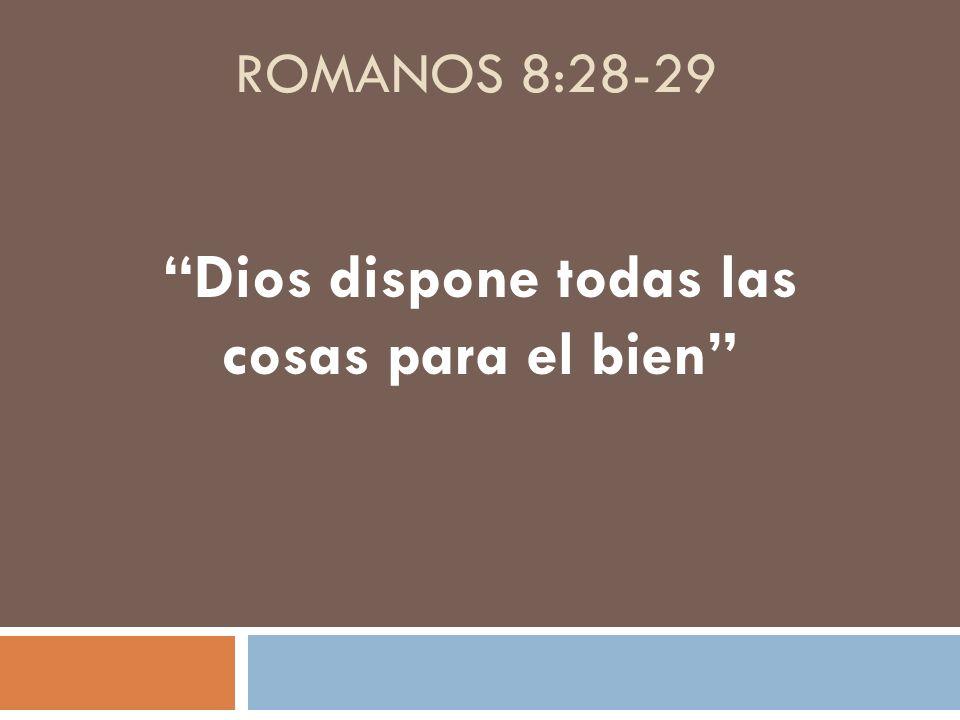 Dios dispone todas las cosas para el bien