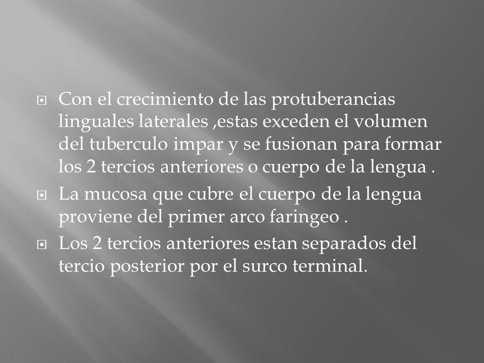 Con el crecimiento de las protuberancias linguales laterales ,estas exceden el volumen del tuberculo impar y se fusionan para formar los 2 tercios anteriores o cuerpo de la lengua .
