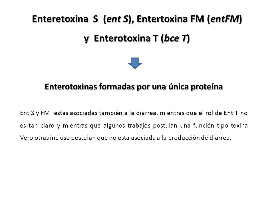 Enteretoxina S (ent S), Entertoxina FM (entFM)
