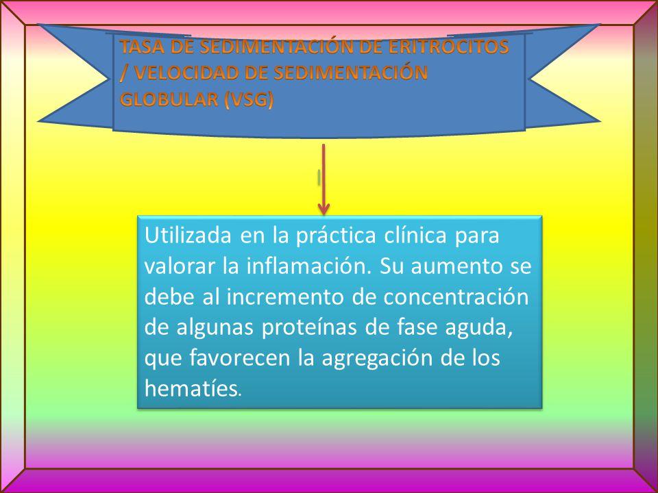 TASA DE SEDIMENTACIÓN DE ERITROCITOS / VELOCIDAD DE SEDIMENTACIÓN GLOBULAR (VSG)