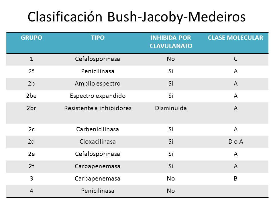 Clasificación Bush-Jacoby-Medeiros