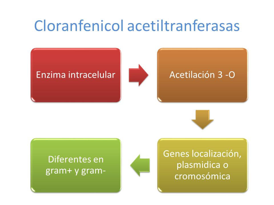 Cloranfenicol acetiltranferasas