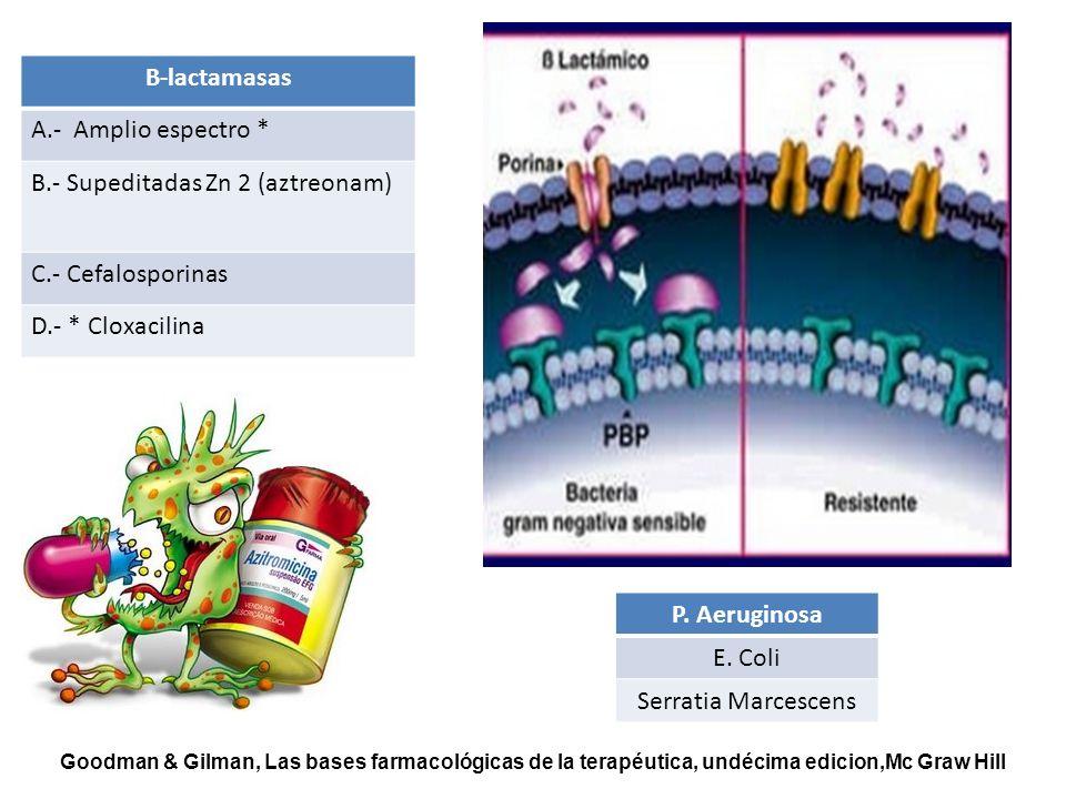 B-lactamasas P. Aeruginosa